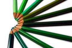 Grüne Farben-Bleistifte Stockfoto