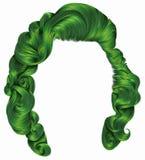 Grüne Farben der modischen Frauenhaare Schönheitsmode Retro- Art lizenzfreie abbildung