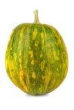 Grüne Farben des Kürbises auf weißem Hintergrund Stockfoto