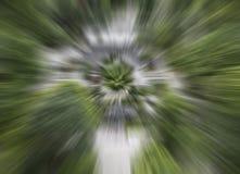grüne Farbzusammenfassungsgeschwindigkeits-Bewegungsunschärfehintergrund, abstrakter Radialstrahl verwischte Musterhintergrund Stockbild