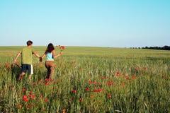 Grüne Feld Landschaft Stockfoto