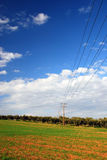 Grüne Felder, blauer Himmel, Stromleitungen Stockfotografie