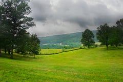 Grüne Felder und Berge Stockbild