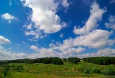 Grüne Felder und blauer Himmel Stockbild