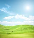 Grüne Feldlandschaft Stockfotografie
