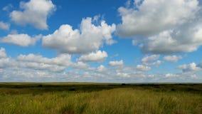 Grüne Feldsommerlandschaft, timelapse Wolken und Feld des blauen Himmels Lizenzfreie Stockfotografie