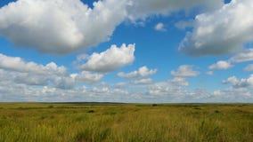 Grüne Feldsommerlandschaft, timelapse Wolken und Feld des blauen Himmels Lizenzfreie Stockfotos