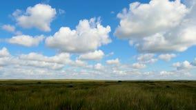 Grüne Feldsommerlandschaft, timelapse Wolken und Feld des blauen Himmels Lizenzfreies Stockfoto