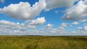 Grüne Feldsommerlandschaft, timelapse Wolken und Feld des blauen Himmels Lizenzfreie Stockbilder