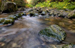 Grüne Felsen in flüssigem Nebenfluss Stockfotografie