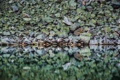 Grüne Felsen und ihre Reflexion Stockfotografie