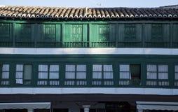 Grüne Fenster und Balkone Lizenzfreie Stockfotografie