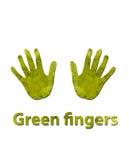 Grüne Finger Stockbilder