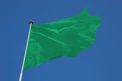 Grüne Flagge lizenzfreie stockbilder