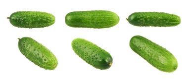 Grüne frische Gurken lokalisiert Lizenzfreie Stockfotografie