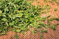 Grüne frische Teeblätter Lizenzfreie Stockbilder