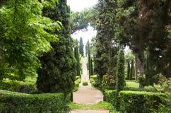 Grüne Gasse in den Gärten lizenzfreie stockfotos