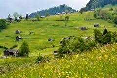 Grüne Gebirgsseite nahe Alt-St. Johan, die Schweiz Stockfotos