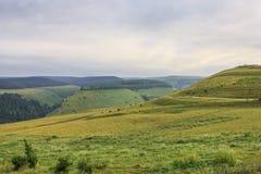 Grüne Gebirgszuglandschaft im Sommer Stockbild