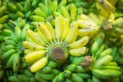 Grüne gelbe Bananen auf dem Zähler stockbild