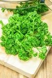 Grüne gelockte Petersilie Stockbild