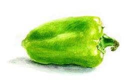 Grüne Gemüsenahaufnahme des grünen Pfeffers des Aquarells Fokus auf Vordergrund Lizenzfreies Stockfoto