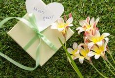 Grüne Geschenkbox mit einem Bogen, ` Fräulein Sie ` Lizenzfreies Stockbild
