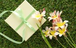 Grüne Geschenkbox mit einem Bogen und Blumen Lizenzfreie Stockfotografie