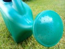 Grüne Gießkanne auf Gras stockbild