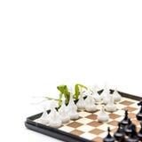 Grüne Gottesanbeterin, die oben Schach auf dem Schachbrett, Abschluss, selecti spielt Stockfotografie