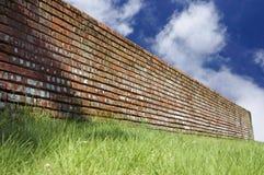 Grüne Gräser und Backsteinmauer über blauem Himmel Stockfotos