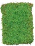 Grüne Gras-Arena lokalisiert auf weißem Hintergrund Stockbilder