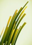Grüne Grenzen Stock Abbildung