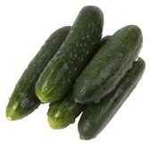 Grüne Gurken Stockbild