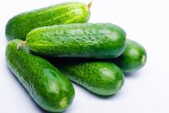 Grüne Gurken frisch auf einem weißen Hintergrund Stockbild