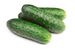Grüne Gurken getrennt Lizenzfreie Stockfotos