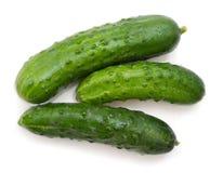 Grüne Gurken lokalisiert auf weißem Hintergrund Lizenzfreie Stockfotografie