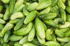 Grüne Gurken von verschiedenen Formen Stockbild