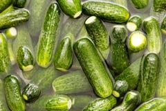 Grüne Gurken waschen sich im Wasser als Hintergrund Stockfotografie