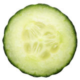 Grüne Gurkenscheibe Stockbild