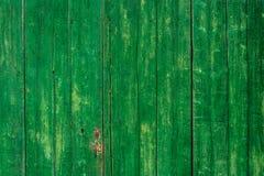 Grüne hölzerne Wand Stockbild