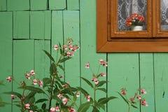 Grüne hölzerne Wand Stockfoto