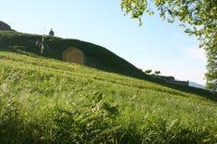 Grüne Hügel Lizenzfreie Stockfotos