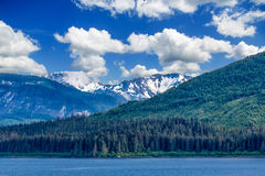 Grüne Hügel Alaskas und blaue Himmel Stockfotos