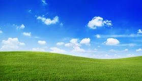 Grüne Hügel-blaues klares Himmel-Landschaftskonzept Stockfoto