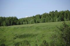 Grüne Hügel des Morgens unter bewölktem Himmel Drastische Szene Stockfotos