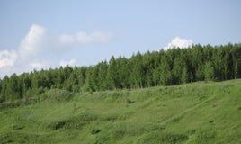 Grüne Hügel des Morgens unter bewölktem Himmel Drastische Szene Lizenzfreies Stockbild