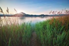 Grüne Hügel des Sees und des Frühlinges Stockfotografie