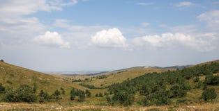 Grüne Hügel mit Bäumen Lizenzfreie Stockfotos