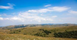 Grüne Hügel mit Bäumen Lizenzfreies Stockfoto